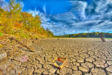 Drought by Patrick Emerson