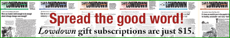 Spread the good word! Lowdown gift subscriptions are just $15.